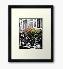 Amsterdam:  Framed Print