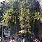 NOLA Balcony 3 by StephenieRenee