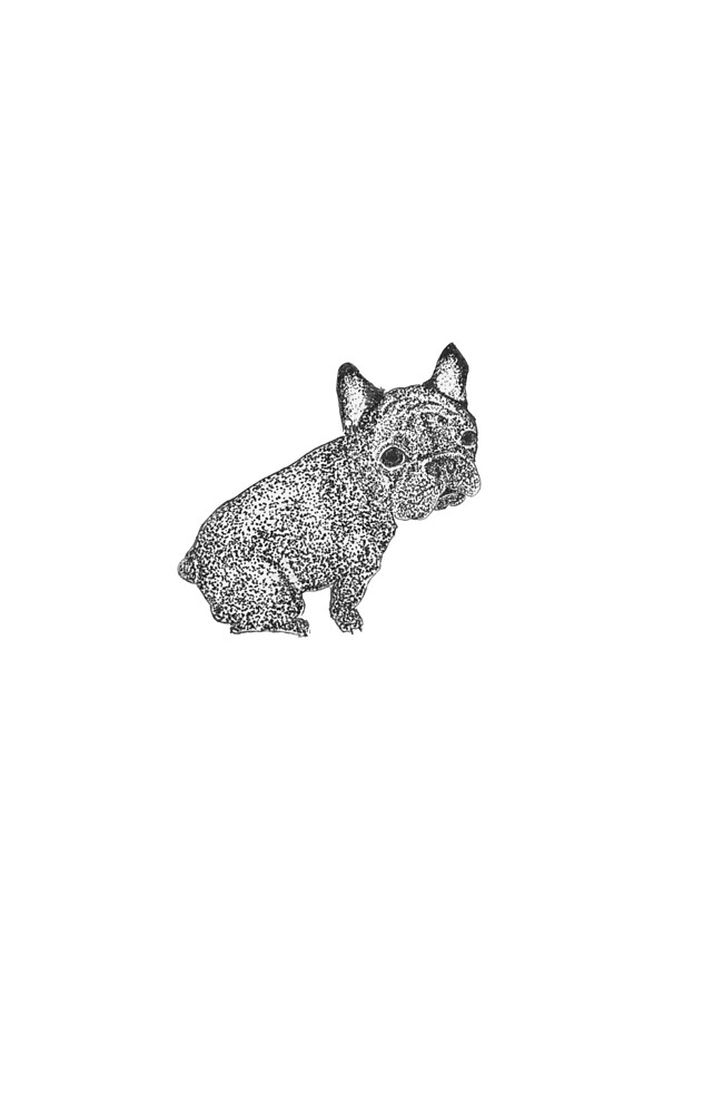 from french bulldog with love by akopyltsova