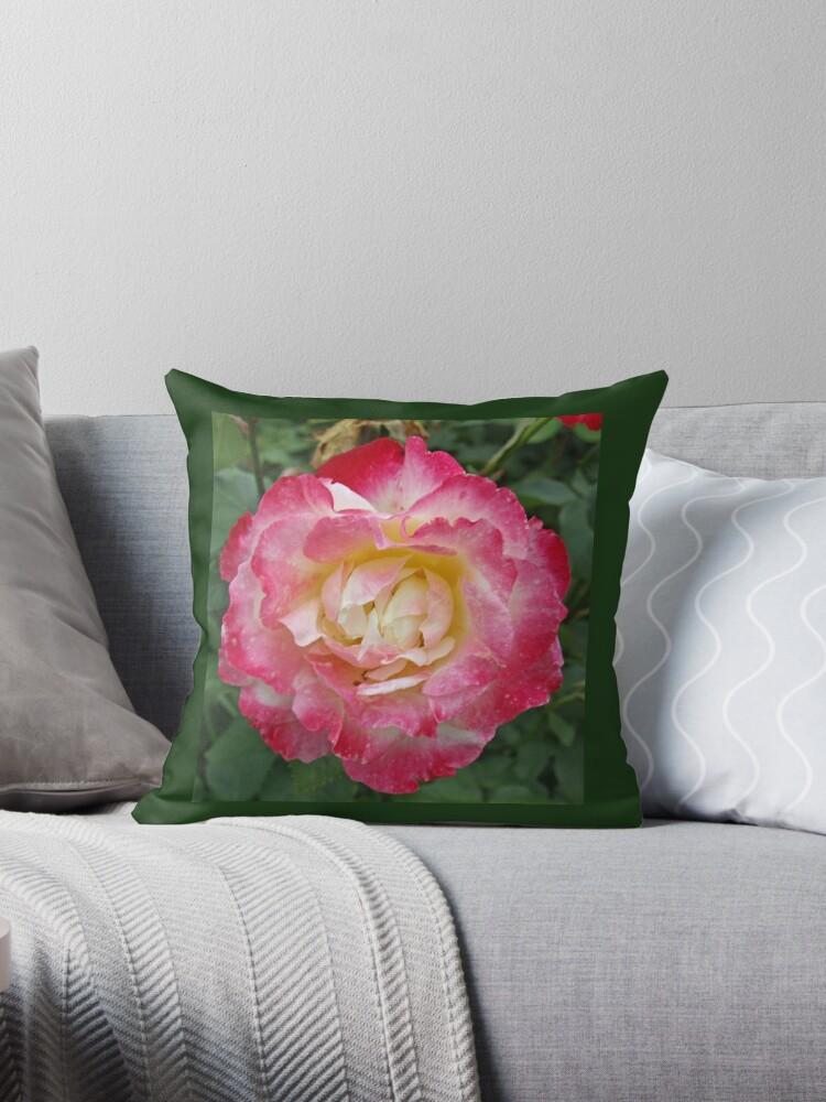 Magenta Flower by tvlgoddess