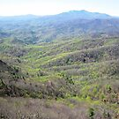 Grandfather Mountain from The Blowing Rock by Heather Morris