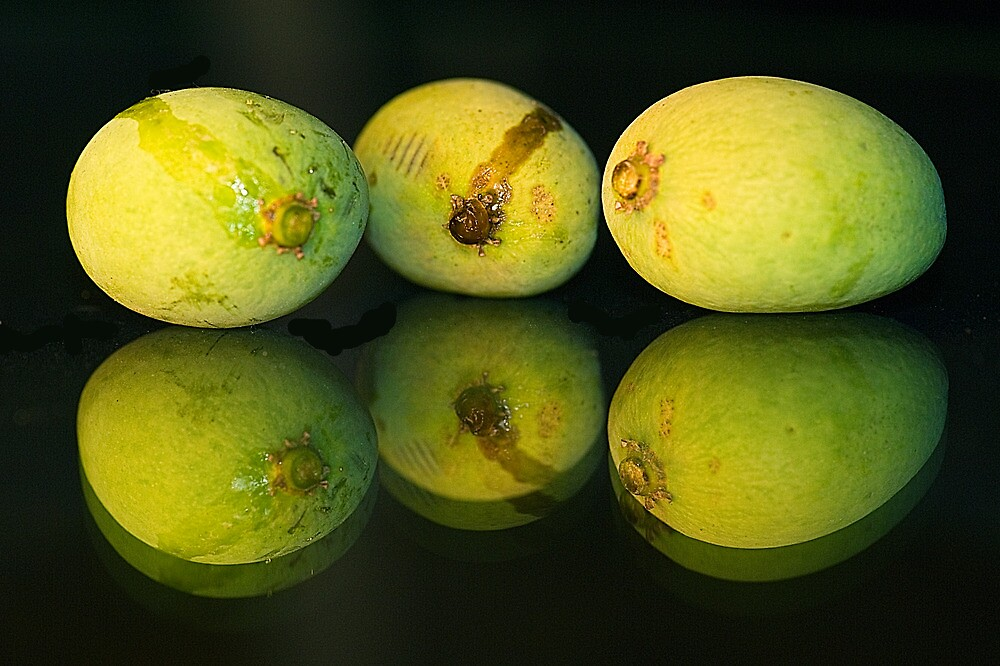Fresh Mangos by Mukesh Srivastava