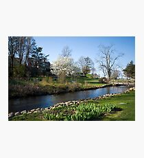 Glorious New England Spring Day Photographic Print