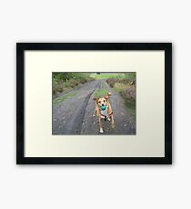 Come On Then! Framed Print