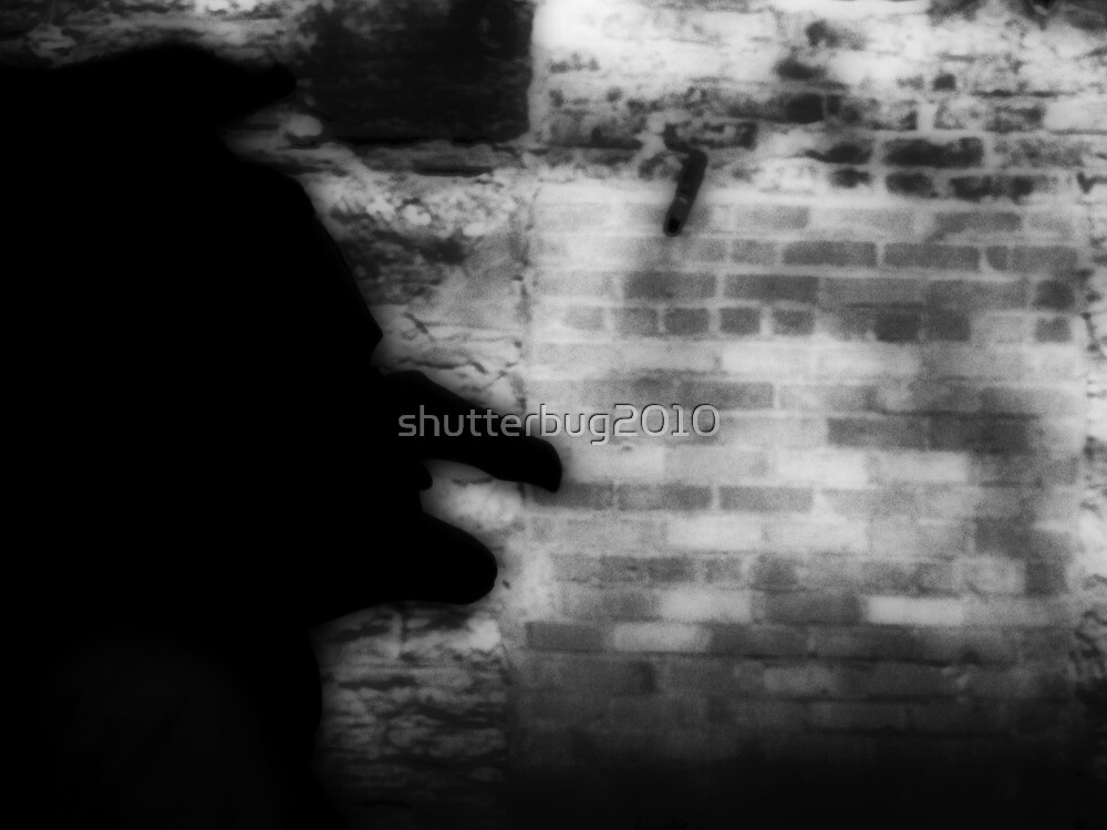 Lurking in the Shadows by shutterbug2010