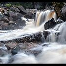 Leven Canyon Falls  by STEPHEN GEORGIOU PHOTOGRAPHY