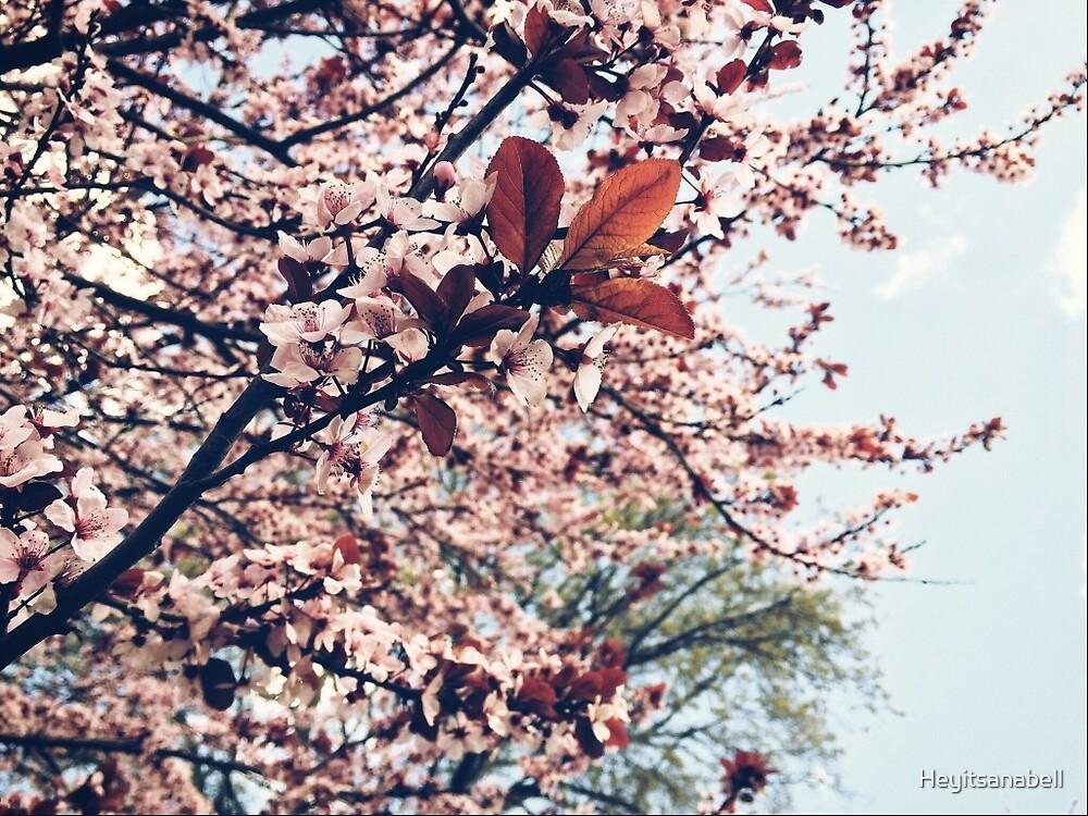 Cherry Blossom tree by Heyitsanabell
