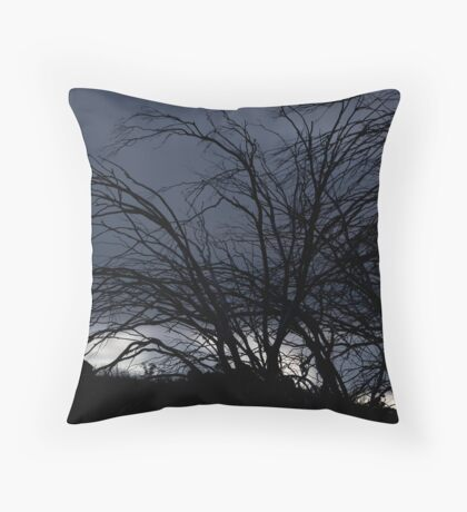 Winter is on its way Throw Pillow