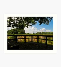 Sheldon Marsh Scenic Overlook Art Print
