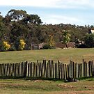 Hill End Fence Line by Sarah Donoghue