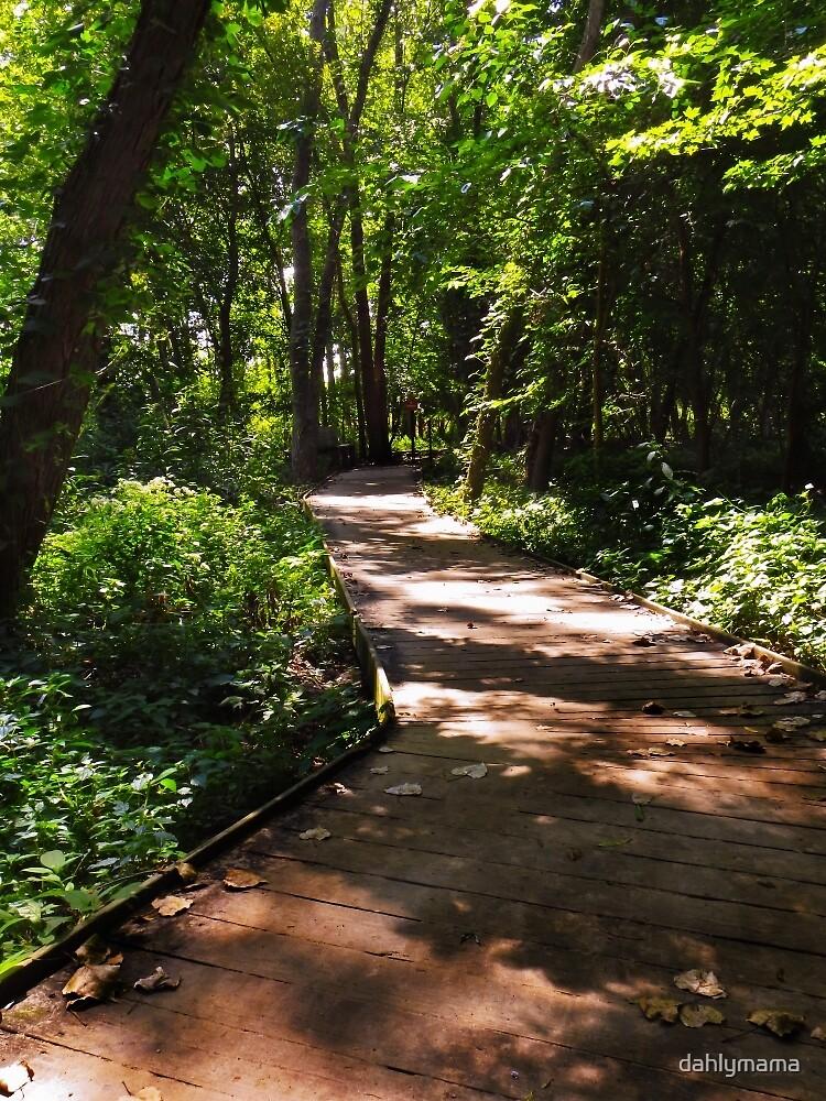 Sheldon Marsh Nature Walk by Shawna Rowe