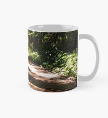 Sheldon Marsh Nature Walk Mug