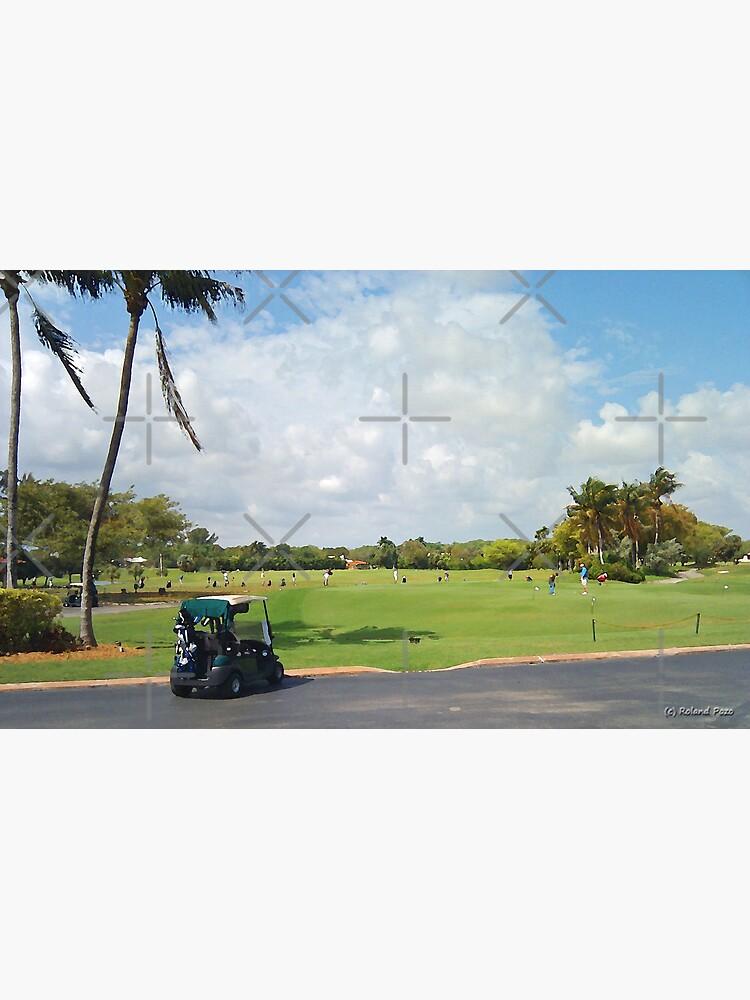 The Golf Car by photorolandi