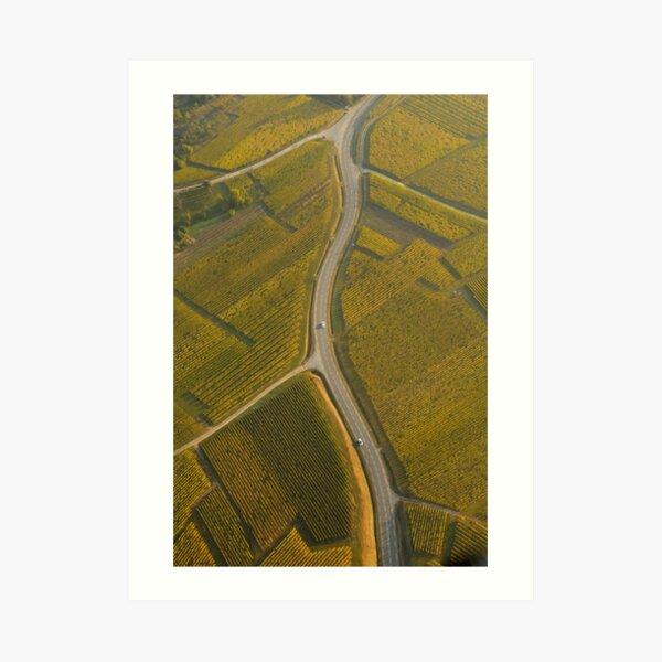 Route au milieu du vignoble Impression artistique