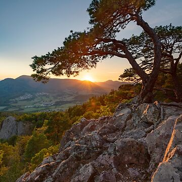 «Coucher de Soleil au rocher du Hagelstein» par Isenmann