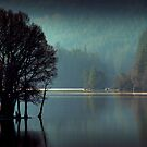 Morning sun moves up Loch Ard by David Mould
