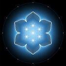 Lotus | Sacred geometry by Natasha Sedyakina