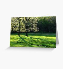Spring Tree Lights Greeting Card