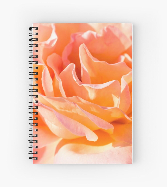 Nested Petals by Belinda Osgood