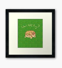 What ARE Frogs? (Desert Rain edition) Framed Print