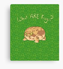 What ARE Frogs? (Desert Rain edition) Canvas Print