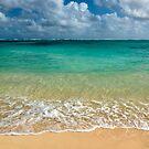 Stepping into a Tropical Paradise - Hawaii by Barbara Burkhardt