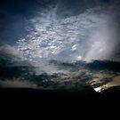 Pursuit of Shadows by angelena rebori
