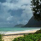 Step into a Slice of Paradise _ Waimanalo Bay _ Hawaii  by Barbara Burkhardt