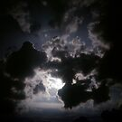 Ray by angelena rebori