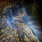 Junction Falls, Blue Mountains NSW by Dot Radley