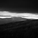Windy Hill by Anthony Evans