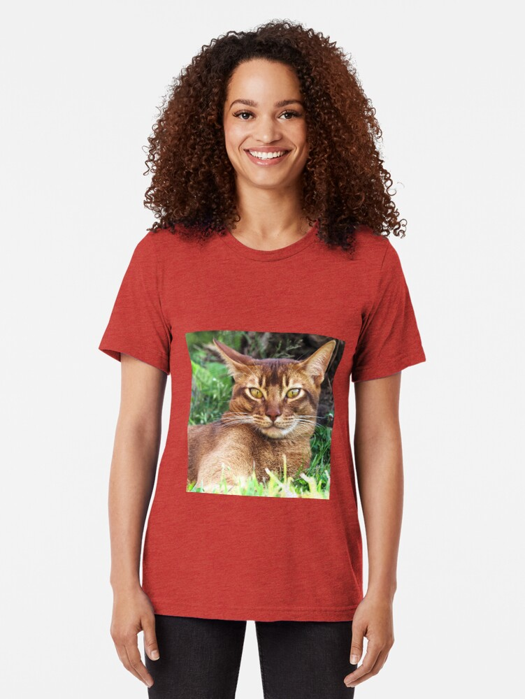 Alternate view of Abyssian Cat in Grass Tri-blend T-Shirt