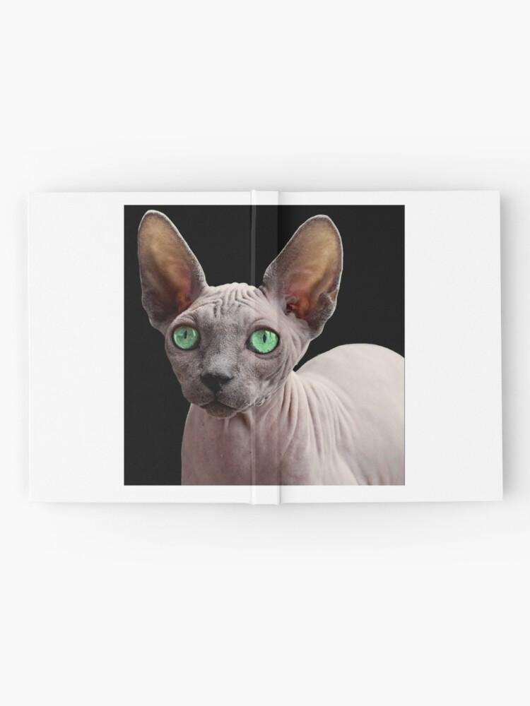 Alternate view of Sphynx Cat Hardcover Journal