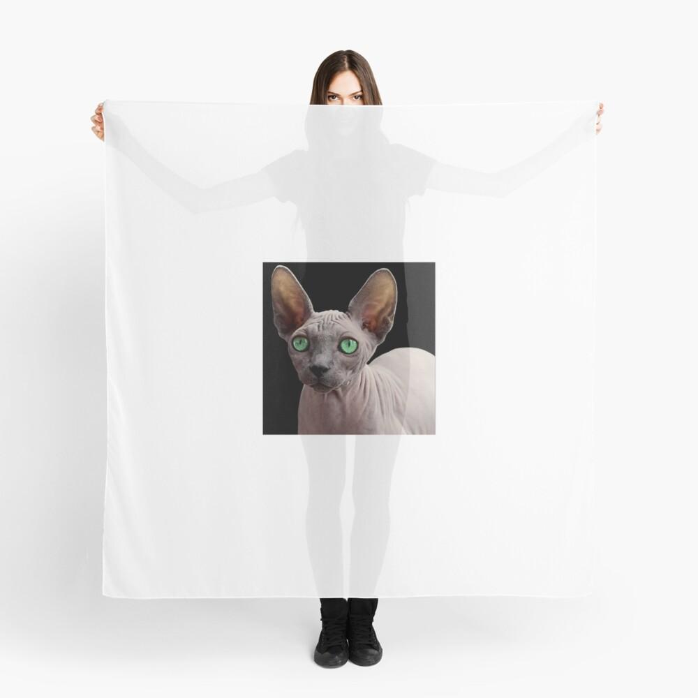 Sphynx Cat Scarf