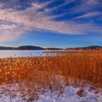 Winter Morning Light 3 by wekegene