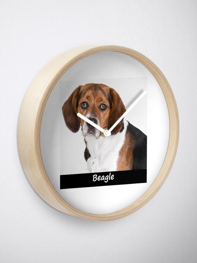 Alternate view of Beagle Clock