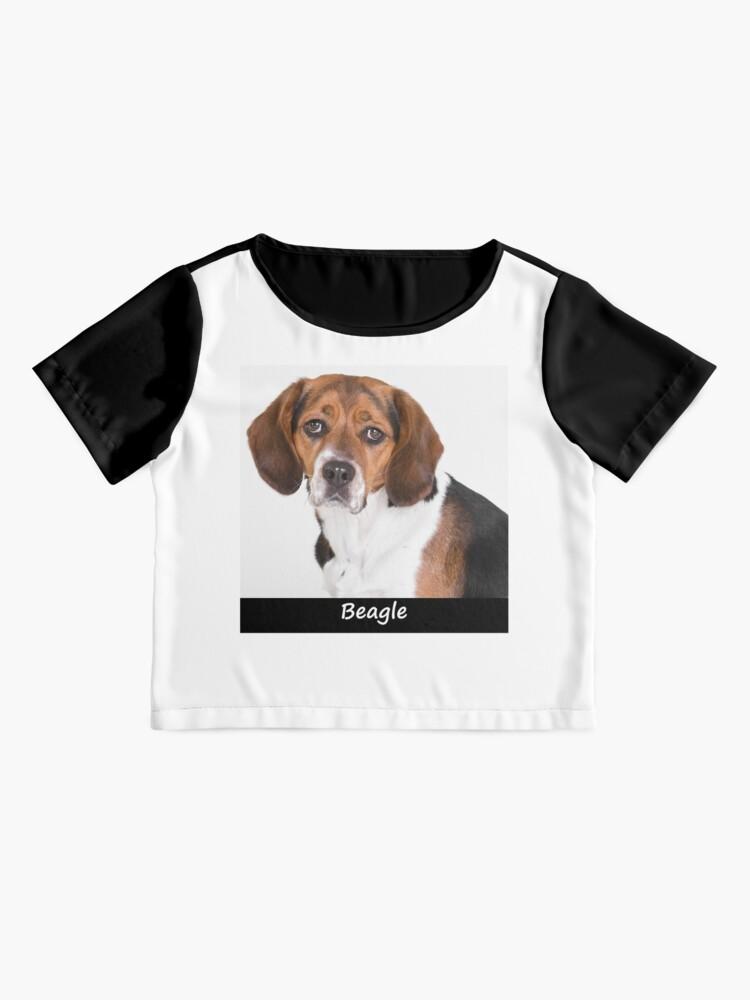 Alternate view of Beagle Chiffon Top