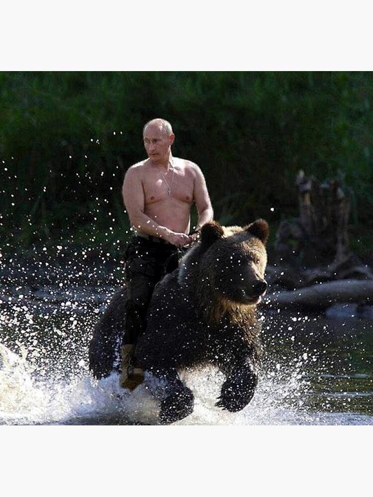 Vladimir Putin Riding A Bear Greeting Card By Andrewgoodman Redbubble