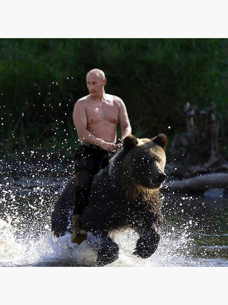 Vladimir Putin Riding A Bear Art Board Print By Andrewgoodman Redbubble