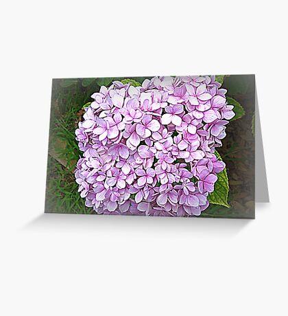 Many small - lovely big Hydrangea Greeting Card