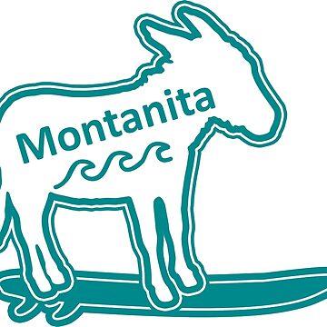 Montanita surfing donkey typo by divotomezove
