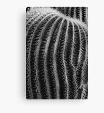 Thorn In My Side Canvas Print
