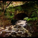 The Bridge by RodneyCleasby