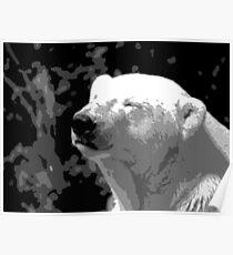 Portrait of the Polar Bear Poster