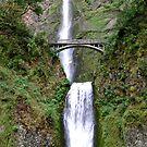 Multnomah Falls  by gail anderson