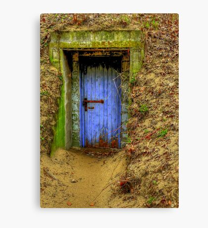 A Wolf at the Door  Canvas Print