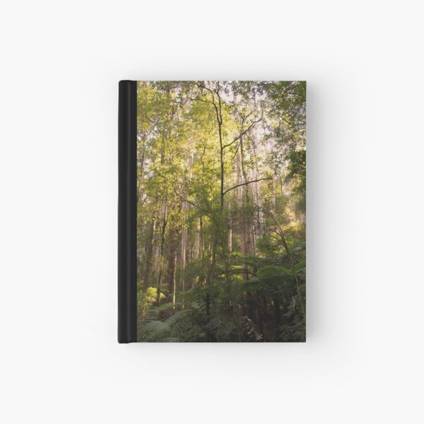 Bask in the sunlight Hardcover Journal