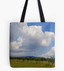 Spring Scenery! Tote Bag