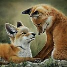Two Foxes by ColinBradleyArt