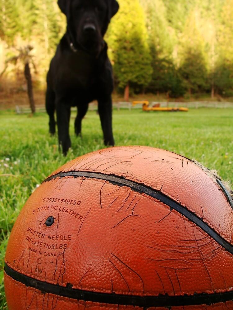 """Just Kick The Ball!"" by VMKgirl"
